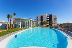 agence-immobiliere-belge-torrevieja