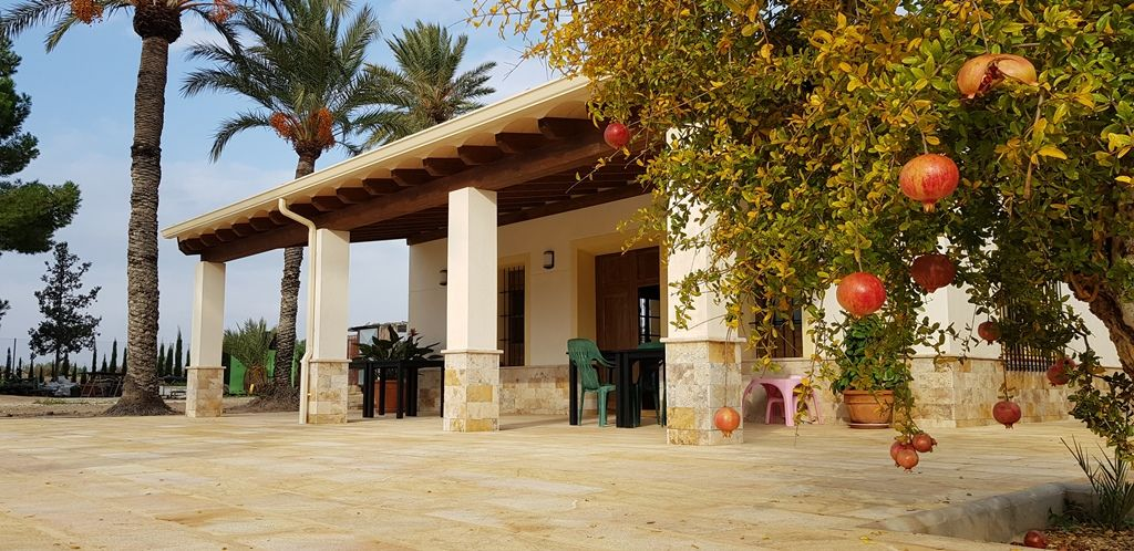 Finca completely renovated on 16 000 m2 in Elche